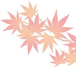 季節のイラスト